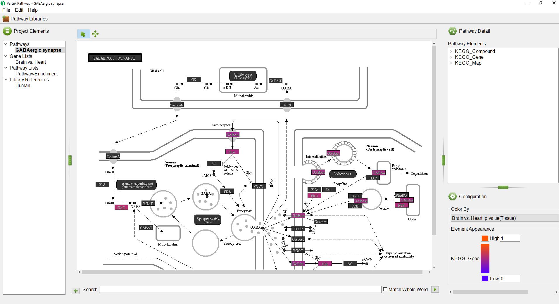 Analyzing pathway enrichment in Partek Pathway - Genomics Suite